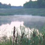 В Уфе на озере утонул 5-летний ребенок