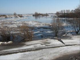 В Башкирии двое детей погибли, спасая из реки щенка
