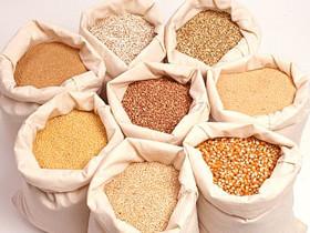 В Башкирии может появиться индийский завод удобрений