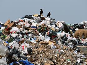 В Башкирии с начала года выявлено 237 несанкционированных мусорных свалок