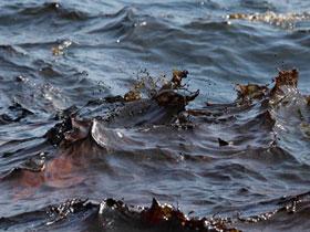 Прокуратура требует устранить последствия разлива нефтепродуктов в Стерлитамакском районе