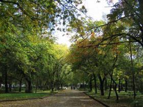 Жителям Башкирии напоминают о дополнительном выходном в октябре