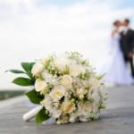 svadba_161212