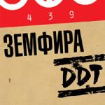 Земфира и Юрий Шевчук выступят в Уфе на празднике День города