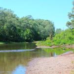 Житель Стерлитамака утонул в реке Ашкадар