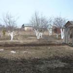 «Башавтотранс» скоро закроет огороднический сезон