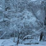 winter_161213