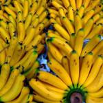 Стоимость бананов в России достигла пятнадцатилетнего максимума