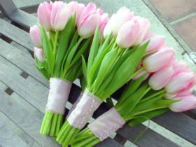 flowers_210814