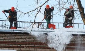 Сегодня утром Вице-губернатор Петербурга расчищал лопатой двор от снега