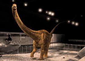 Найдены останки самого большого в истории динозавра