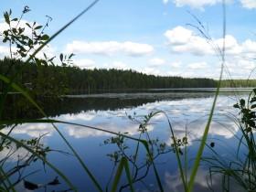 В Стерлитамаке наблюдается стабилизация уровней рек
