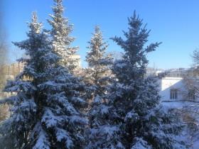 zima-sneg_270218