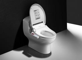 tualet_131118