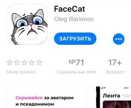 facecat-131218