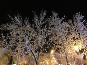 sneg-zima_071218