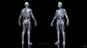 skelet_230119