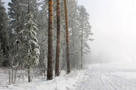 snegopad_011217