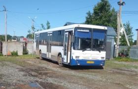 bus-010619
