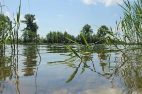 reka-leto_010718