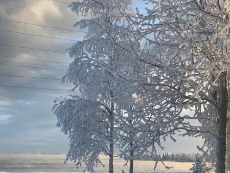 zima-winter7_021220