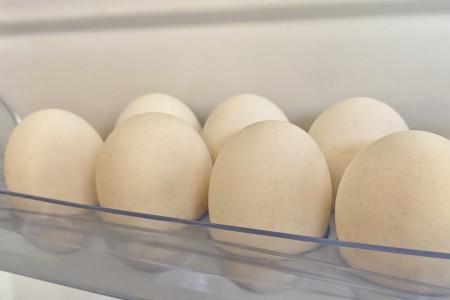 egg-yaico_140421